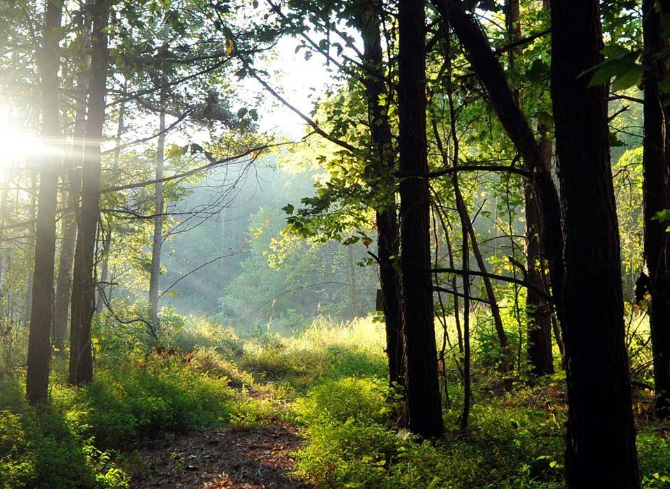 Carolina Thread Trail Cedrone Farms