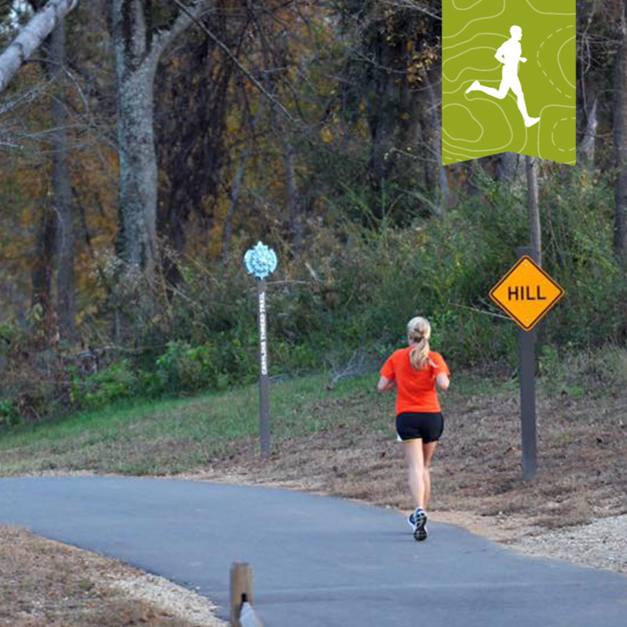 Running on Carolina thread trail